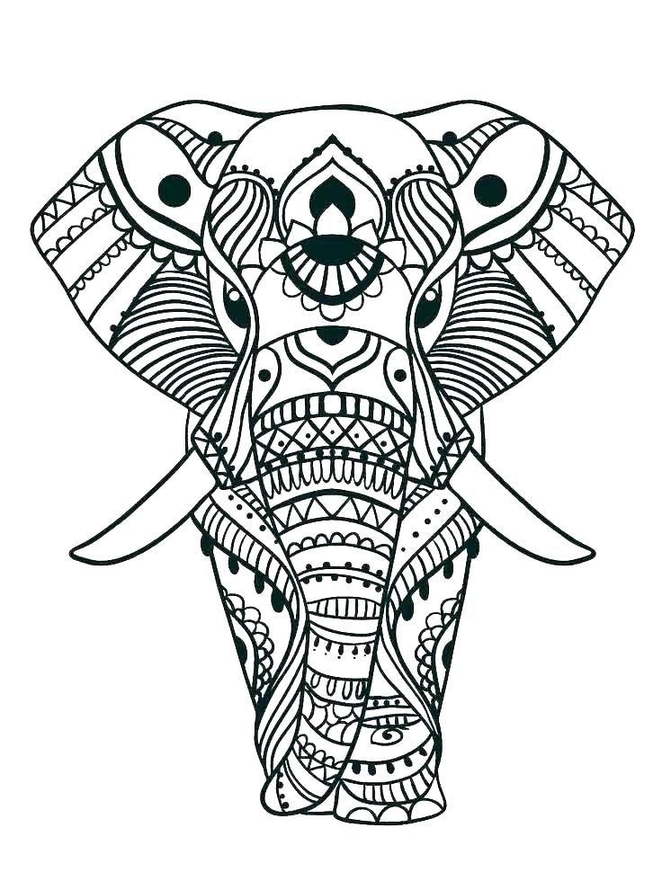 elephant color pages print elephant
