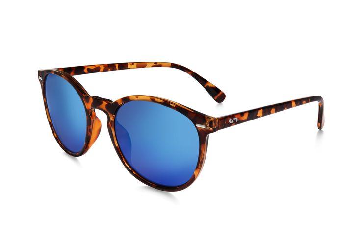 Occhiali da sole polarizzati: FLASH / BROWN TORTOISE di Slash Sunglasses  http://www.slashsunglasses.com/shop/flash/flash-tartaruga-marrone-blu.html