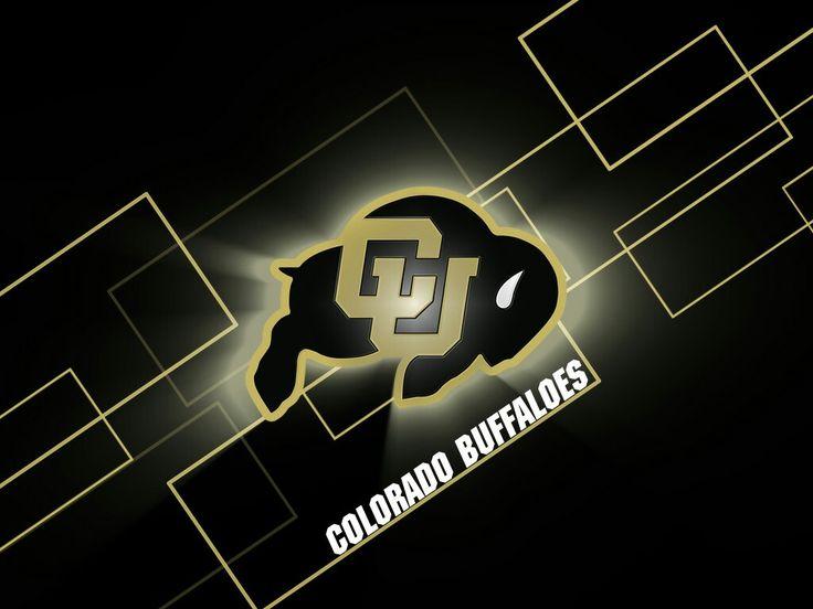 Cus Damato Buffalo I Love Colorado Schools Aspen Bison Colleges