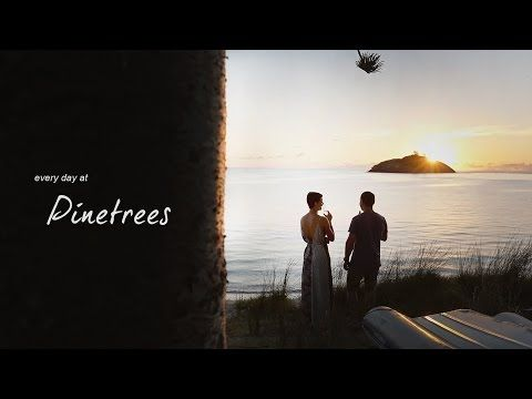 Every Day at Pinetrees - YouTube
