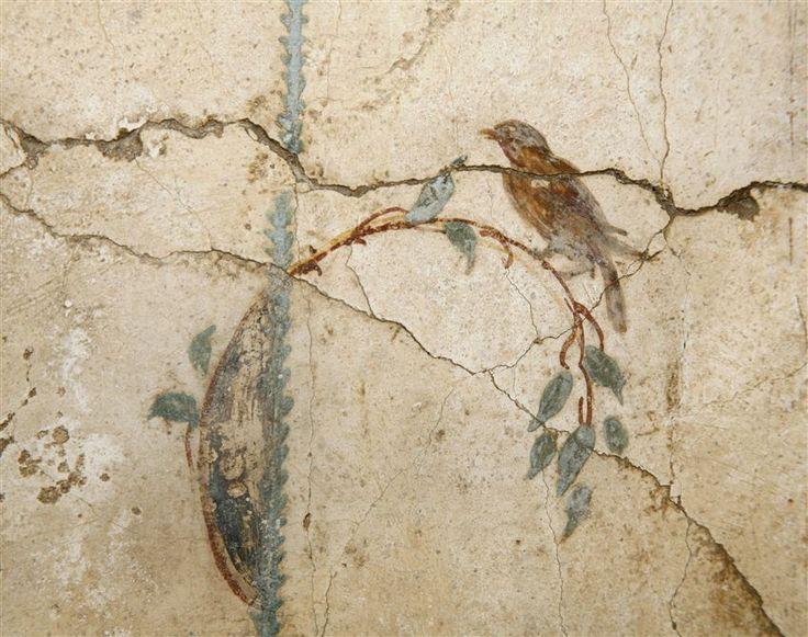 lilyonlife:  whitenoten:    Villa Arianna,Stabiae