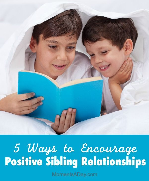 Early Sibling Relationships Influence Adult Behavior