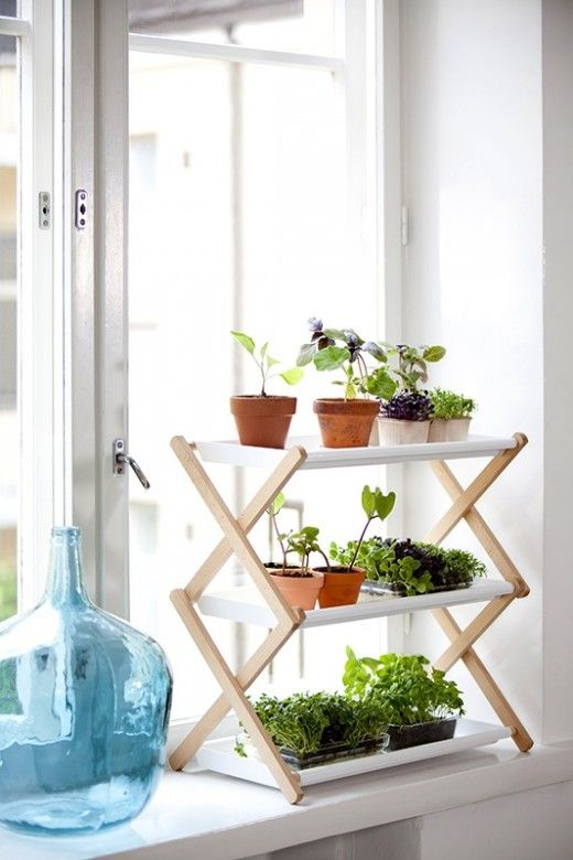 Drying rack turned plant stand.