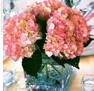 simple pink hydrangea centerpieces (mixed with raspberry roses)