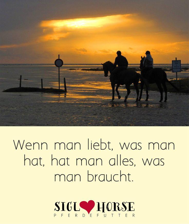 Wenn man liebt, was man hat, hat man alles, was man braucht.  Wunderschöne Sprüche und Pferdewahrheiten!