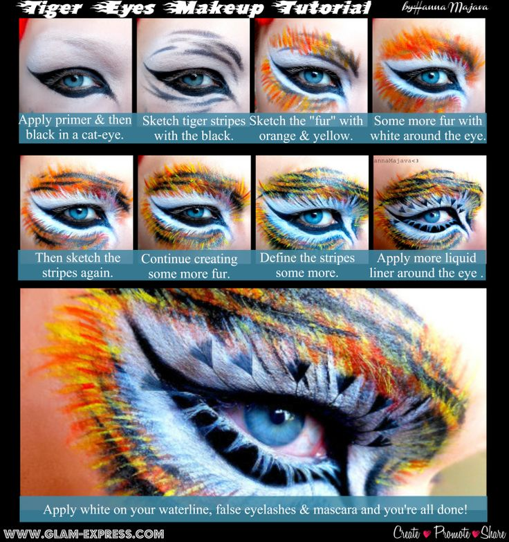 Tiger Eyes Makeup Tutorial – Glam Express