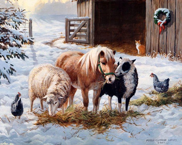 Скачать обои  домашние животные, Persis Clayton Weirs 1280x1024
