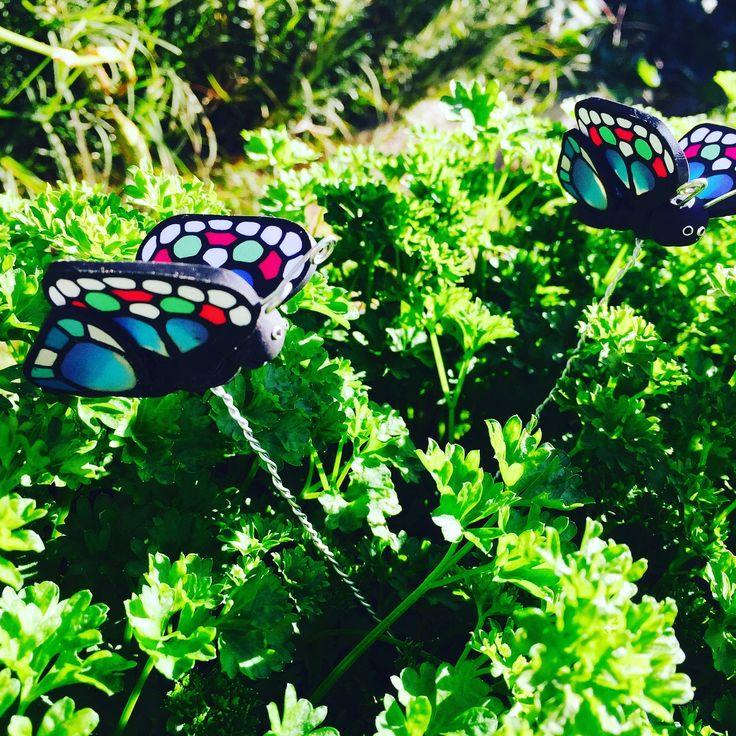 Hand made polymer clay Butterflies