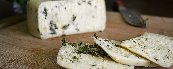 Dieser würzige Pesto-Cashew-Käse mit Raucharoma passt hervorragend aufs gegrillte Sandwich oder eine vegane Käseplatte.