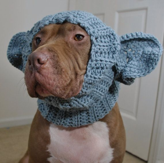 OMG, just cracking up laughing at this. my dog would freak if I tried this on him! Dog Snood Elephant Crochet Large by courtanai on Etsy, $35.00
