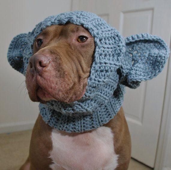 Free Crochet Pattern Dog Snood : Dog Snood Elephant Crochet Large doggies! Pinterest ...