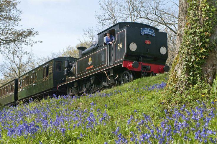 Isle Of Wight Steam Train