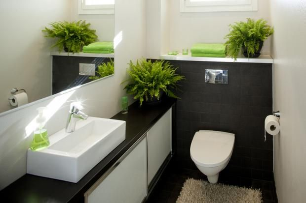 Nice toilet with painted walls (no tiles)