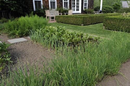 17 best images about gardening on pinterest gardens vineyard and dutch colonial homes - Ina garten garden ...