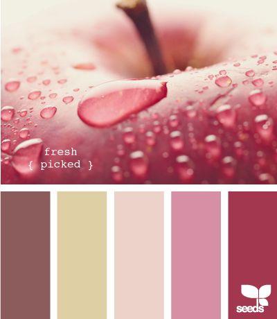 Dark Chocolate, Fine Linen, Sweet Blush, Autumn Rose, Scarlet Jewel