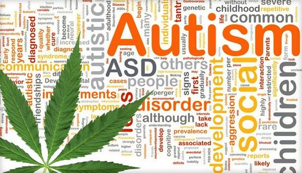 Government Study Shows CBD Oil a 'Miracle' Cure For Autism
