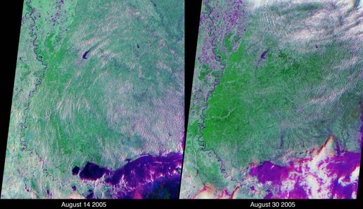 MISR Image of Katrina - Flooding of Lake Maurepas and the land between Lake Maurepas and Lake Pontchartrain - before and after photos