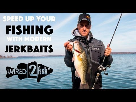 Winter Bass Fishing Fun with Modern Jerkbaits! - Wired2fish - Scout
