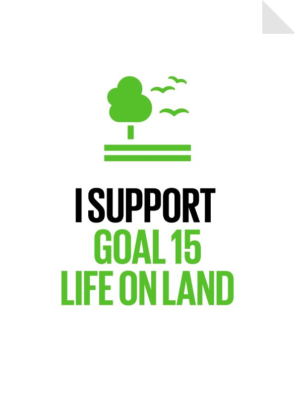 I support Global Goal #15 - Life on Land - The world's forests are a shared stolen treasure that we must put back for our children's future. Desmond Tutu - By 2030 our forests will be saved from deforestation. - Protect, restore and promote sustainable use of terrestrial ecosystems, sustainably manage forests, combat desertification, and halt and reverse land degradation and halt biodiversity loss.