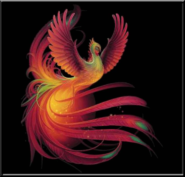 phoenix mythical bird pictures   Ancient Phoenix Flaming Bird Mythical Fantasy Womens Shirts s M L XL ...