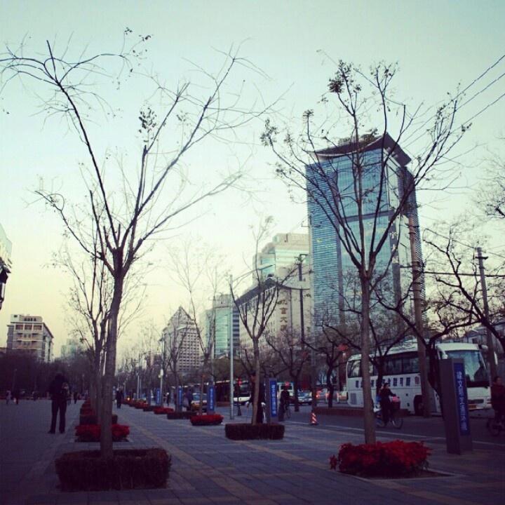 Beijing, December 2008
