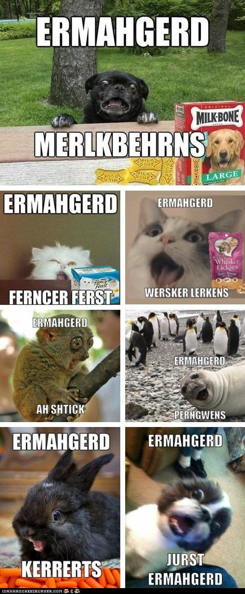 Ermahgerd... I honestly thought the girl in the original meme was retarded so I didn't laugh at these... but when I found out it was just dental appliances I lost it. XD