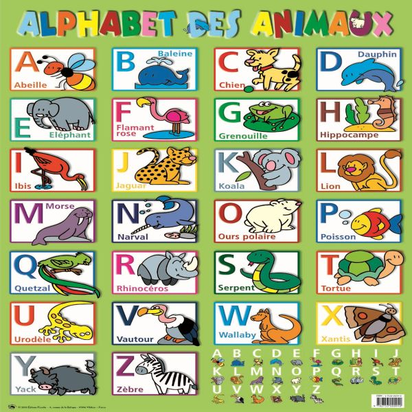 1000 images about fle enfants on pinterest videos - Alphabet francais maternelle ...