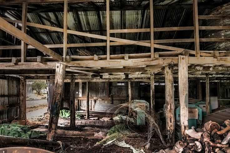 My style the great Australian shed