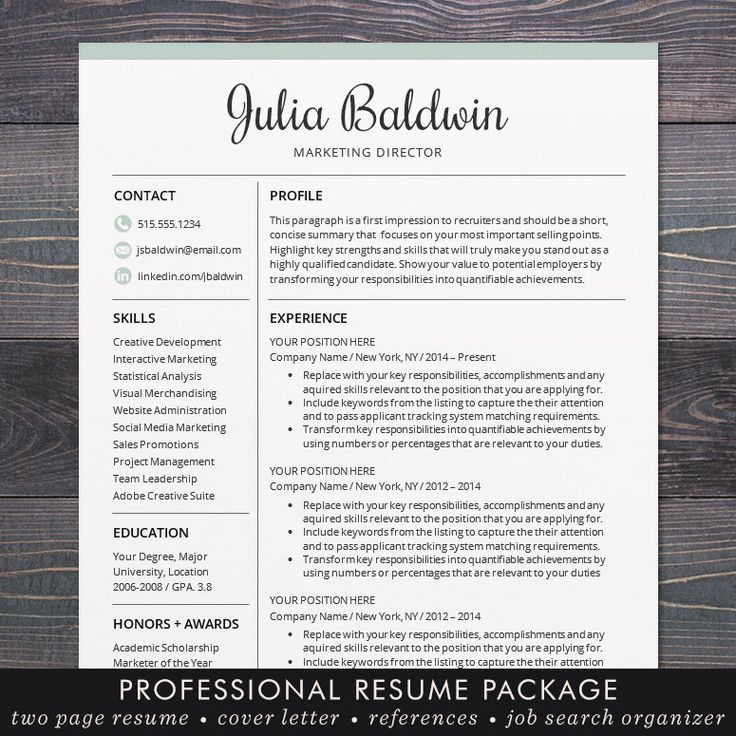 SALE Professional Resume / CV Template Mac or PC for Word