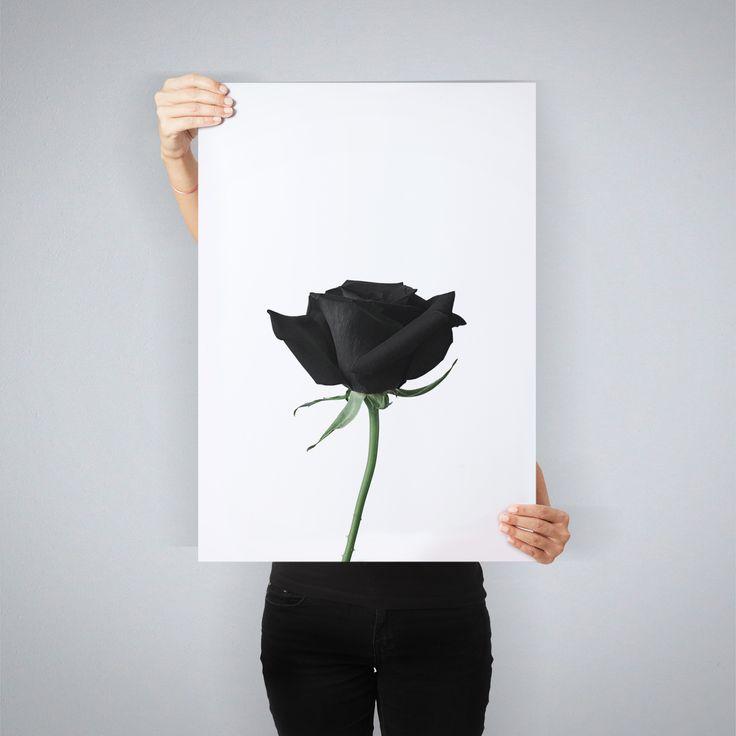 """""""Black Rose"""" // art print by People of Tomorrow"""