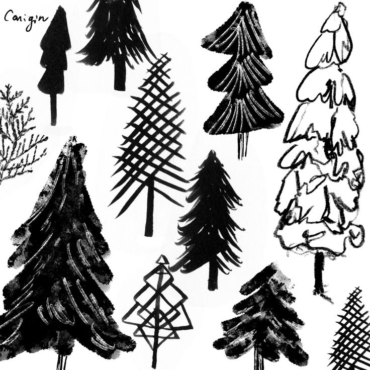 Black & white snow forest, Pine trees, Winter trees surface pattern/ fabric, craft idea for holiday design by canigrin