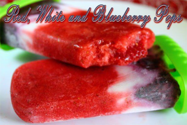 Red White and Blueberry Patriotic Ice Pops