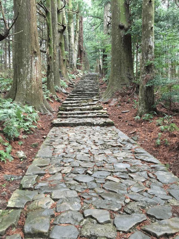 Daimonzaka Path leading to Nachi Taisha Shrine and Nachi Falls, part of the Kumano Kodo pilgrimage route in Japan.