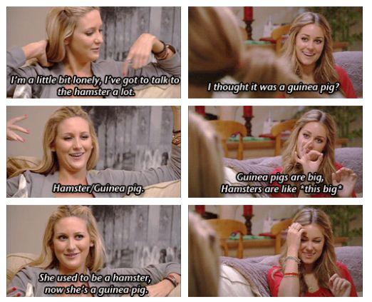 Funniest Quotes From The Hills - Betches Love This  hamster/guinea pig