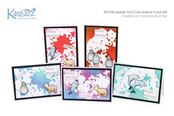 2H1930 Splash Out Cute Animal Card Set