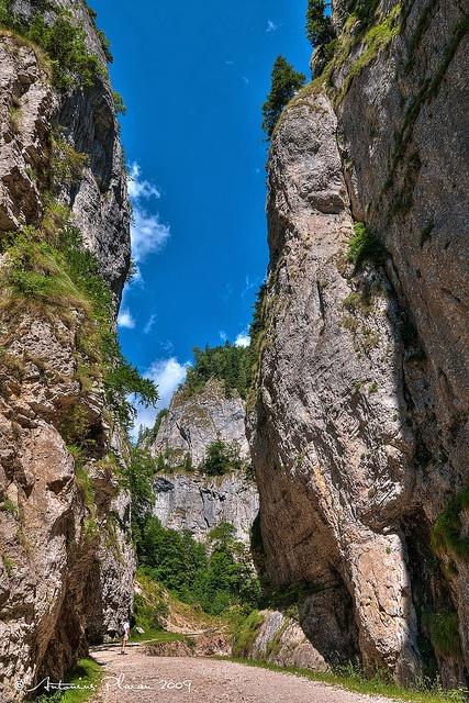 "Zarnesti - The narrow passes of ""Piatra Craiului"" massif by Antonius Plaian, via Flickr"