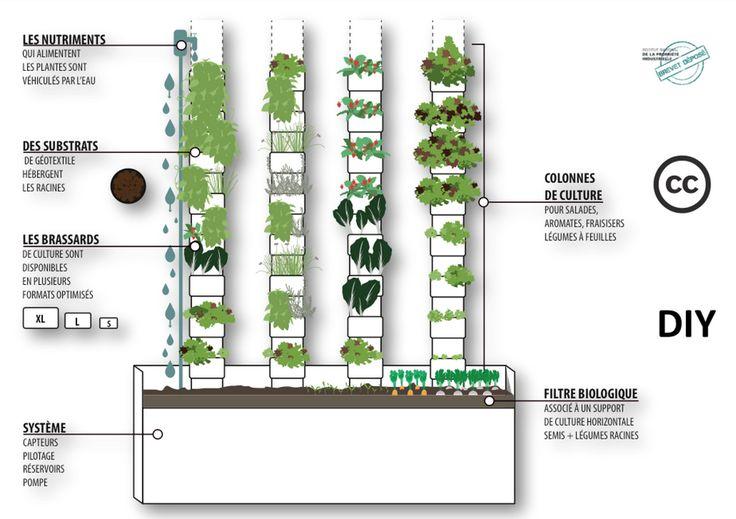 """""""AVEC L'AGRICULTURE VERTICALE, ON PEUT FAIRE POUSSER 400 SALADES PAR AN SUR UN BALCON !""""... http://consocollaborative.com/article/avec-lagriculture-verticale-on-peut-faire-pousser-400-salades-par-an-sur-un-petit-balcon/"""