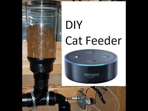 DIY Auto Cat Feeder