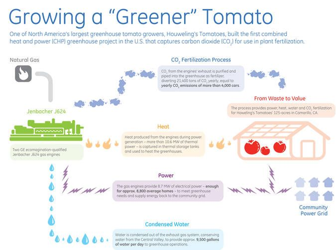 America's first Combined Heat and Power (CHP) project that captures carbon dioxide to help fertilise tomatoes has been unveiled. The Houweling's Tomatoes project uses two General Electric Company (GE) 4.36-megawatt (MW), ecomagination-qualified Jenbacher J624 two-staged turbocharged natural gas engines and a carbon dioxide fertilisation system to provide heat, power and carbon dioxide to the 125-acre tomato greenhouse in Camarillo, California.