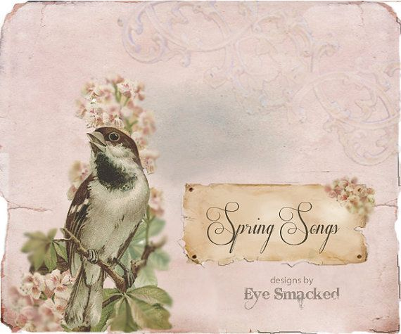 Etsy Banner Spring Bird Antique Vintage Styled By Eyesmacked