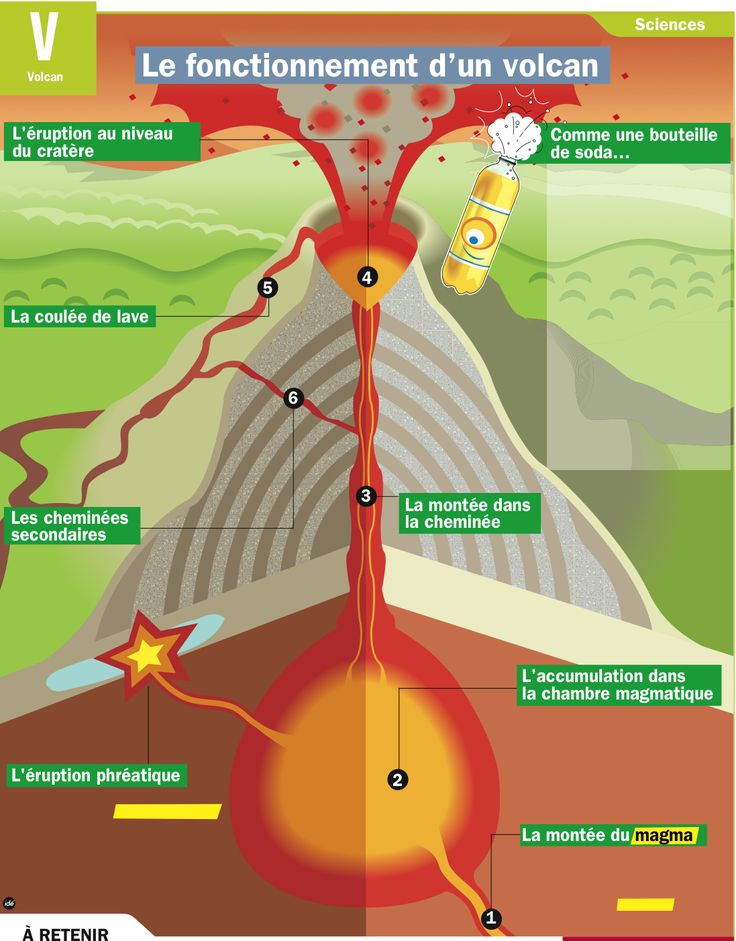 1 Un volcan naît à l'endroit où le magma réussit à sortir de la croûte terrestre. 2 Il s'accumule d'abord dans une chambre magmatique. 3 Quand la pression y est trop forte, les parois se fendent et le magma monte le long de la cheminée. 4 Les gaz contenus dans le magma le poussent jusqu'au cratère et créent une éruption. Plus il y a de gaz, plus l'éruption est violente.