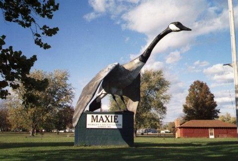 World's Largest Goose, Sumner MO.