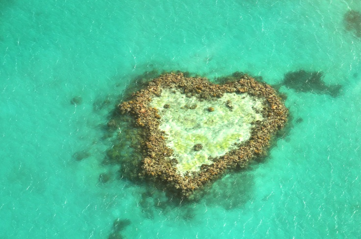 The Heart Shaped Reef, Great Barrier Reef, Australia 2011