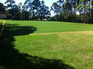 Synthetic Grass Sydney - Artificial Grass Sydney, Landscaping, Matraville, NSW, 2036 - TrueLocal