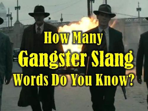 How Many Gangster Slang Words Do You Know? http://ift.tt/1PJe6fd  #Funny Games Slang World
