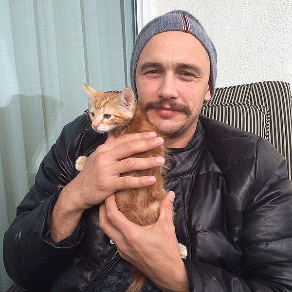 Our Favorite Celebrity Cat Dads | Angora cats, Men with cats, Cat ...