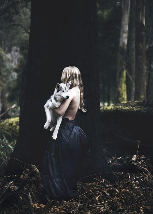 #witch #wolf #woods #halloween #mood