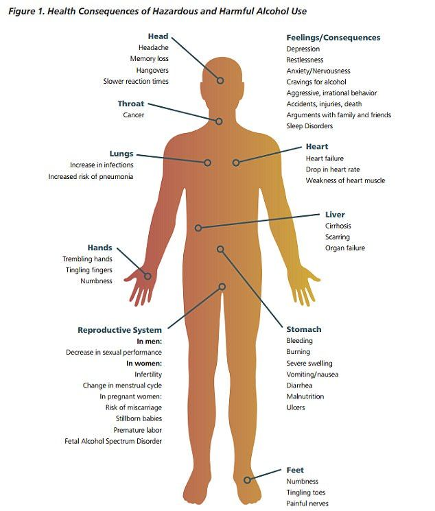 Health consequences of Drinking Too Much Alcohol    Graphic - Samhsa - The US Substance Abuse & Mental Health Services Administration