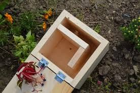 Bildergebnis für rostliny pro čmeláky