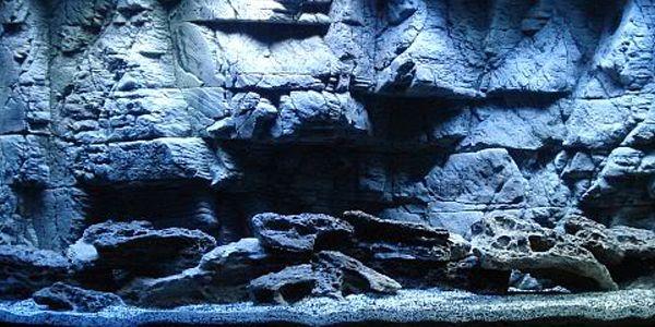 diy 3d aquarium background | NotJustFish 3D Aquarium Backgrounds, Discus, pond pumps and filters
